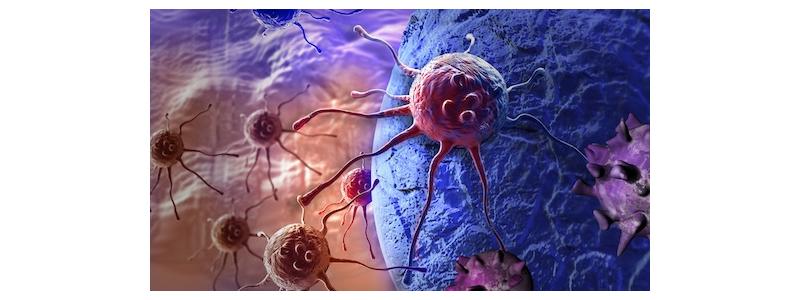 Kanser Tarama Testi Ne Zaman Yapılmalı?